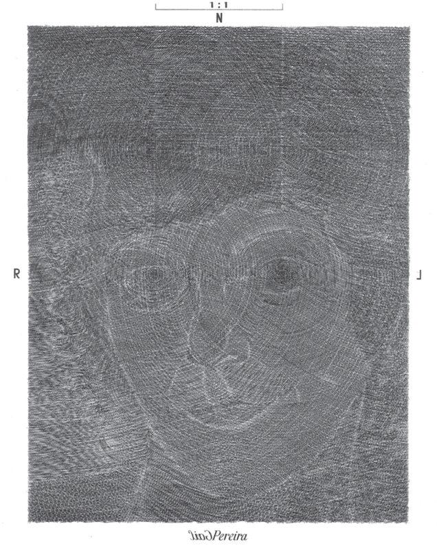 Pereira - gravure de Sonja Hopf